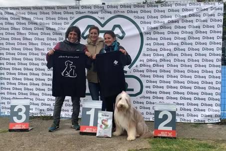 fotos entrega de camiseta en dog agility cantabria