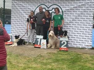 premiados en dog agility cantabria